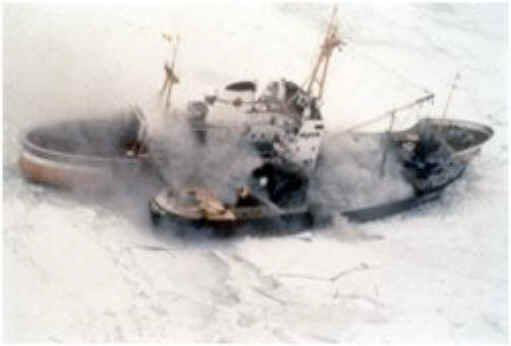 Sea Shepherd, anno 1983