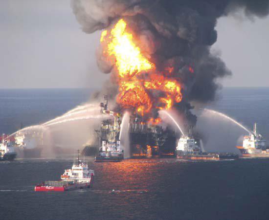 Sea Shepherd, anni dal 2000 al 2006