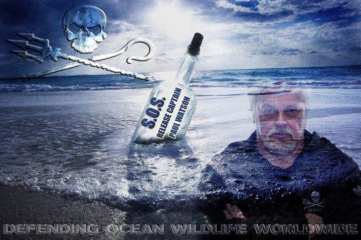 UE: ZANONI (IDV), LIBERATE PAUL WATSON FONDATORE DI SEA SHEPERD