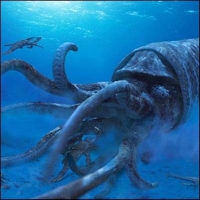 Calamaro colossale  -Mesonychoteuthis hamiltoni,Squid Colossal