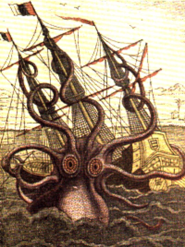 Kraken -Disegno di Pierre Denys de Montfort, dalle descrizioni di marinai francesi che sostenevano di essere stati aggrediti da questa creatura al largo dell'Angola (1801).
