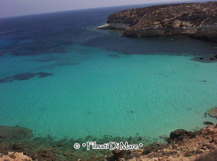 Lampedusa est dell'isola dei conigli