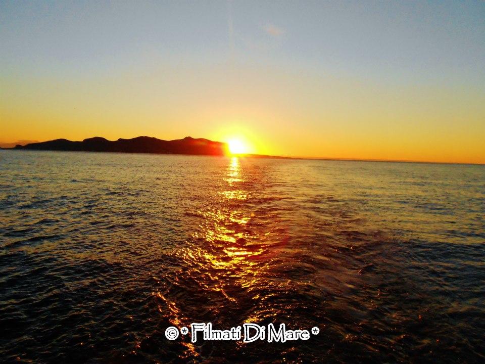 Sirena rapita dal mare -Marina,Racconti di mare