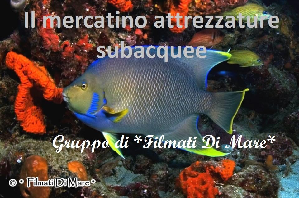 Mercatino attrezzature subacquee
