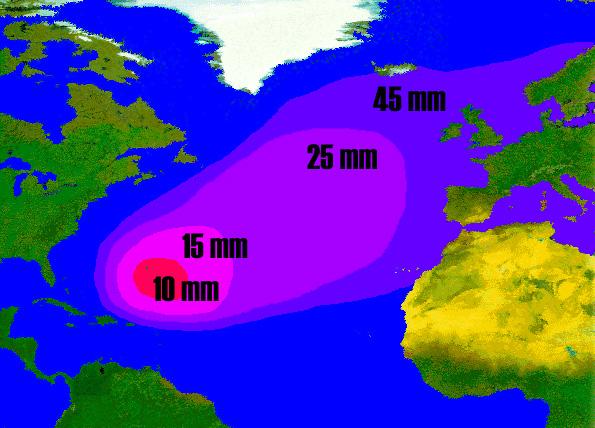 Anguilla anguilla, anguilla europea -immagine della distribuzione e della dimensione delle larve di anguilla