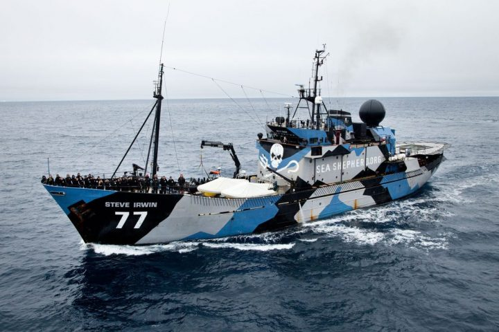 Tanzania Operazione Jodari con Sea Shepherd