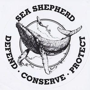Sea Shepherd :Per difendere, conservare e proteggere i nostri oceani